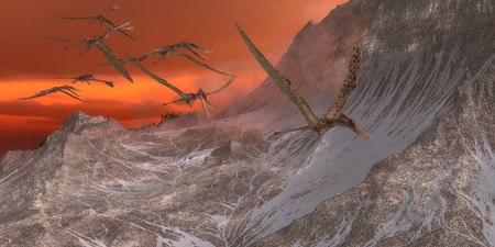 pterosaur: Zhenyuanopterus Flying Reptile - Zhenyuanopterus was a carnivorous pterosaur that lived in the Cretaceous Period of China.