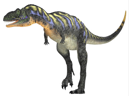 carnivorous: Aucasaurus over White - Aucasaurus was a carnivorous dinosaur that lived in the Cretaceous Period of Argentina, South America. Stock Photo