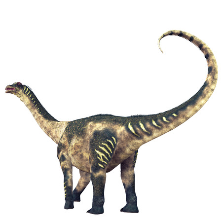 behemoth: Antarctosaurus Dinosaur Tail - Antarctosaurus was a titanosaur sauropod that lived in South America in the Cretaceous Period.