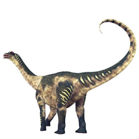 sauropod: Antarctosaurus dinosaurio Tail - Antarctosaurus era un saur�podo titanosaurio que vivi� en Am�rica del Sur en el per�odo Cret�cico.