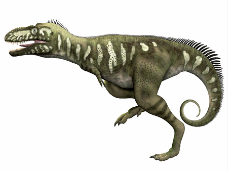 lived: Bistahieversor over White - Bistahieversor was a carnivorous dinosaur that lived in the Cretaceous Period of New Mexico.