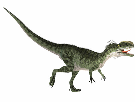 biped: Monolophosaurus over White - Monolophosaurus was a carnivorous theropod dinosaur that lived in the Jurassic Period of China. Stock Photo