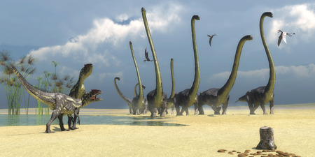 fragilis: Allosaurus and Omeisaurus Dinosaurs  Three Dorygnathus flying reptiles watch as two Allosaurus predators prepare for an attack on a herd of Omeisaurus dinosaurs.