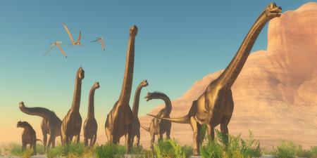 dinosauro: Rettili volanti Brachiosaurus Pomeriggio Tre Pteranodon guardano come un branco di dinosauri, Brachiosaurus viaggiare nei pressi di una montagna canyon.
