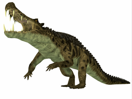 mesozoic: Kaprosuchus over White  Kaprosuchus was a marine reptile that lived in rivers and swamps of the Cretaceous Period. Stock Photo