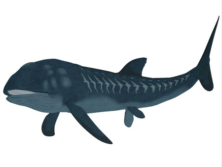 jurassic: Leedsichthys Fish over White  Leedsichthys was a carnivorous fish that inhabited Jurassic Seas that could grow to be 53 feet long. Stock Photo