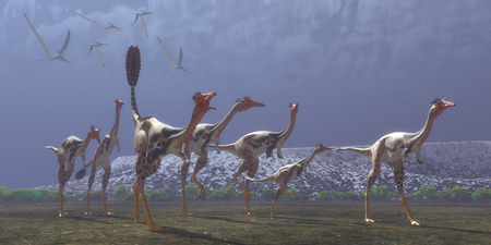lived here: Mononykus Dinosaurs  Mononykus was a carnivorous dinosaur that lived in Mongolia in the Cretaceous Period. Here a flock of Pteranodons follow a group of Mononykus waiting for them to catch prey.