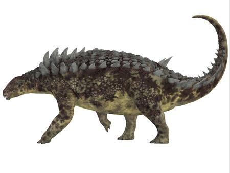 Hungarosaurus Side Profile   Hungarosaurus was an ankylosaur herbivorous dinosaur that lived in Hungary during the Cretaceous Period.