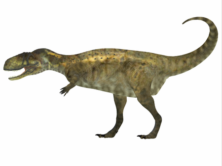 cretaceous: Abelisaurus Side Profile   Abelisaurus was a carnivorous theropod dinosaur that lived in the Cretaceous Period of Argentina.