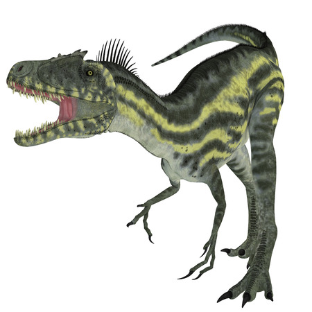 cretaceous: Deltadromeus on White   Deltadromeus was a theropod carnivorous dinosaur that lived in Northern Africa during the Cretaceous Period.