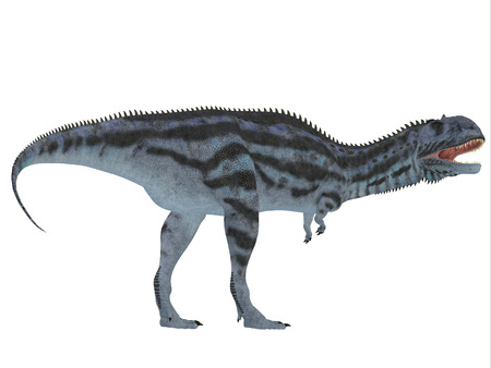 carnivore: Majungasaurus Side Profile   Majungasaurus was a carnivorous theropod dinosaur that lived in Madagascar in the Cretaceous Period.