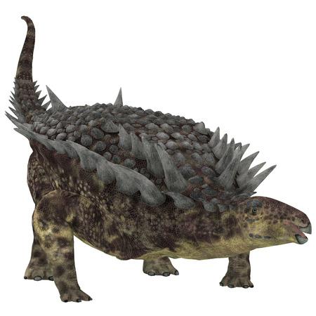 Hungarosaurus Herbivore Dinosaur   Hungarosaurus was an ankylosaur herbivorous dinosaur that lived in Hungary during the Cretaceous Period.