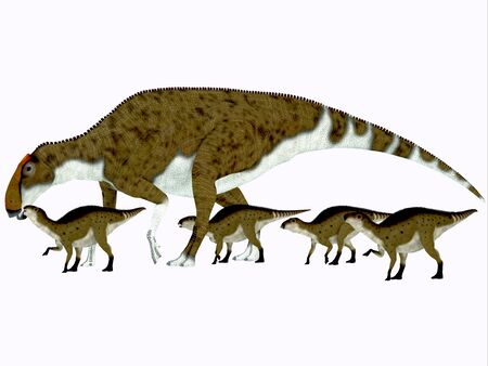 youngsters: Brachylophosaurus Side Profile    Brachylophosaurus was a herbivorous hadrosaur dinosaur that lived during the Cretaceous Period of Alberta Canada and Montana North America.