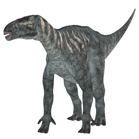 cretaceous: Iguanodon Herbivore Dinosaur   Iguanodon was a herbivorous dinosaur that lived in Europe during the Cretaceous Period.