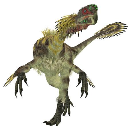 lagartija: Citipati Hombre Dinosaurio Citipati era un dinosaurio ter�podo omn�vora que vivi� en Mongolia durante el Per�odo Cret�cico. Foto de archivo
