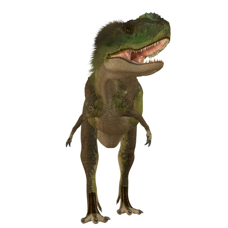 carnivore: Rugops Carnivore Dinosaur - Rugops was a carnivorous theropod dinosaur that lived during the Cretaceous Period of Africa.