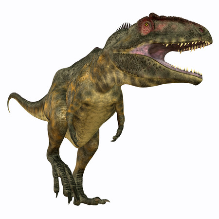 carnivores: Giganotosaurus Carnivore - Giganotosaurus was a carnivorous theropod dinosaur that lived in Argentina during the Cretaceous Period. Stock Photo