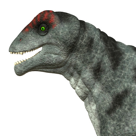 primeval: Moschops Dinosaur Head - Moschops was a primeval herbivorous dinosaur that lived in South Africa in the Permian Period.