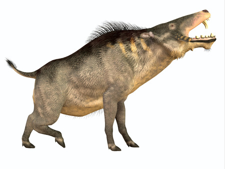 omnivore: Entelodon Side Profile - Entelodon was an omnivorous pig that lived in Europe and Asia in the Eocene through the Oligocene Periods. Stock Photo