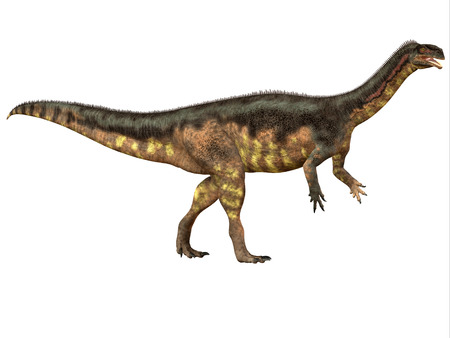 herbivorous: Plateosaurus Side Profile - Plateosaurus was a prosauropod herbivorous dinosaur that lived in the Triassic Age of Europe.