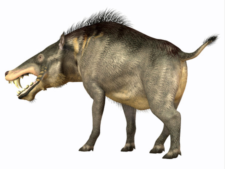 omnivore: Entelodon Omnivore - Entelodon was an omnivorous pig that lived in Europe and Asia in the Eocene through the Oligocene Periods.