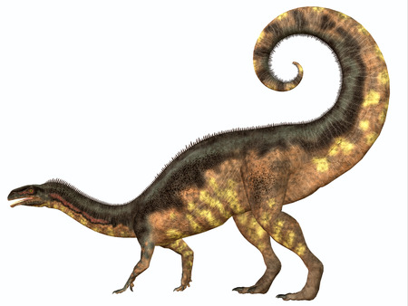 triassic: Plateosaurus Dinosaur Tail - Plateosaurus was a prosauropod herbivorous dinosaur that lived in the Triassic Age of Europe. Stock Photo