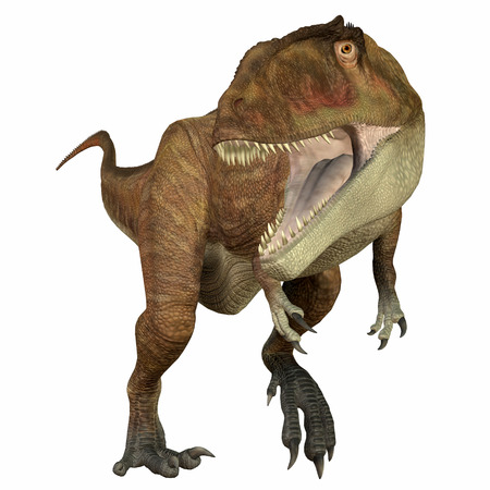 Carcharodontosaurus Carnivore - Carcharodontosaurus was a carnivorous theropod dinosaur that lived in Sahara, Africa during the Cretaceous Period. Stock Photo