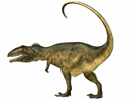 cretaceous: Giganotosaurus Dinosaur Tail - Giganotosaurus was a carnivorous theropod dinosaur that lived in Argentina during the Cretaceous Period.