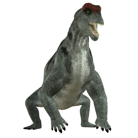 herbivore: Moschops Herbivore Dinosaur - Moschops was a primeval herbivorous dinosaur that lived in South Africa in the Permian Period. Stock Photo