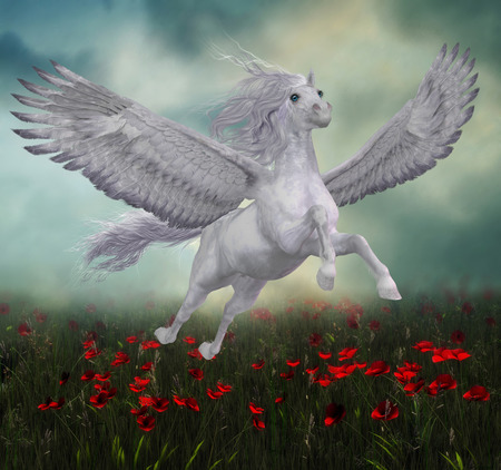 pegasus: Pegasus and Red Poppies - A beautiful white Pegasus horse flies over a field of red poppies on wide spread wings. Stock Photo