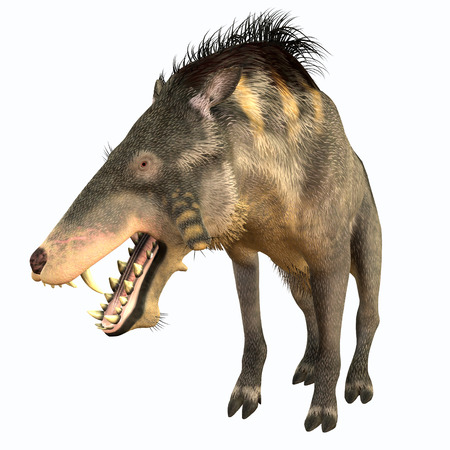 terminator: Entelodon Terminator Pig - Entelodon was an omnivorous pig that lived in Europe and Asia in the Eocene through the Oligocene Periods.