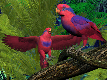 bipedal: Red and Blue Lory Parrots - The Red and Blue Lory parrot is an endangered parrot and lives in Indonesia.