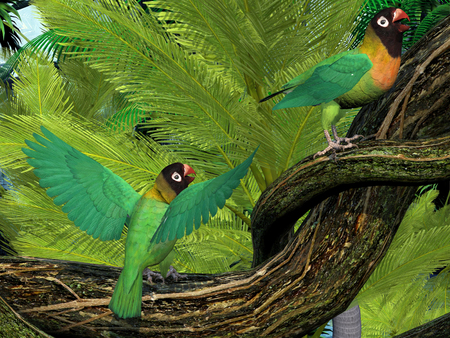 bipedal: Black-cheeked Lovebirds - The Black-cheeked Lovebird is a small parrot with mostly green coloring and is found in Zambia, Africa.