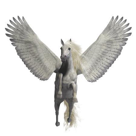 Blanc sur blanc Pegasus - Pegasus est un légendaire divine ailes étalon et est la créature la plus connue de la mythologie grecque. Banque d'images - 45602151