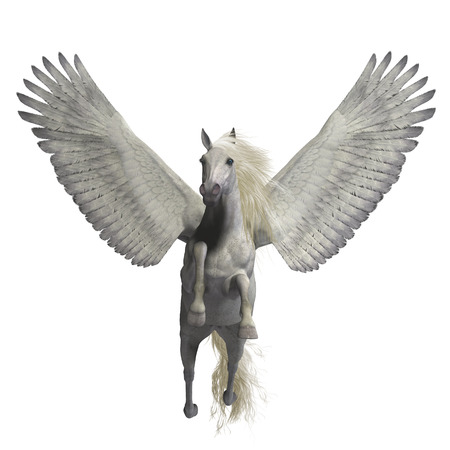 mythology: White Pegasus on White - Pegasus is a legendary divine winged stallion and is the best known creature of Greek mythology.