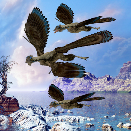 prehistoric era: Archaeopteryx Flying Reptiles - Archaeopteryx reptile birds fly near a shoreline hunting for fish on a cloudy prehistoric day. Stock Photo