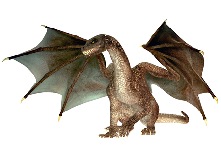 dragons: Angry Dragon - The dragon is a legendary creature with reptilian traits and wings featured in myths in many cultures.