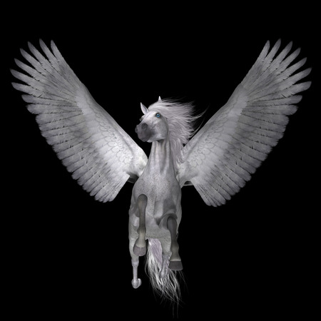 legends folklore: White Pegasus on Black - Pegasus is a lengendary divine winged stallion and is the best known creature of Greek mythology. Stock Photo