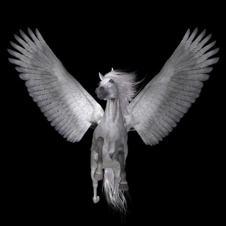 greek mythology: White Pegasus on Black - Pegasus is a lengendary divine winged stallion and is the best known creature of Greek mythology. Stock Photo
