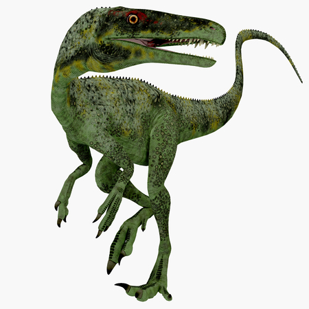 jurassic: Juravenator Jurassic Dinosaur - Juravenator was a small carnivorous dinosaur that lived in Germany during the Jurassic Period. Stock Photo
