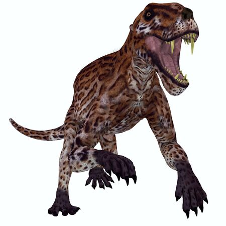 vertebrate: Lycaenops Permian Cat - Lycaenops was a carnivorous mammal-like reptile that lived in South Africa during the Permian Period.