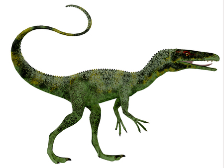 bipedal: Juravenator Dinosaur Profile - Juravenator was a small carnivorous dinosaur that lived in Germany during the Jurassic Period.