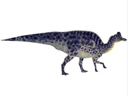 herbivorous: Velafrons Dinosaur Profile - Velafrons was a large herbivorous Hadrosaur dinosaur that lived in Mexico during the Cretaceous Period.