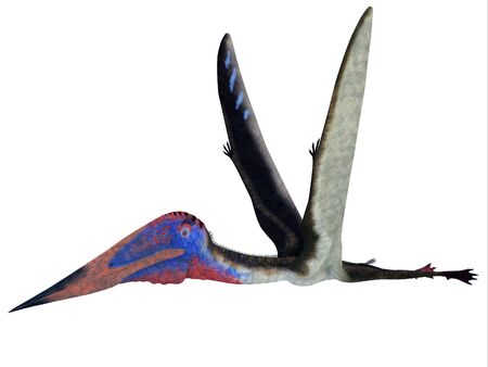 cretaceous: Zhejiangopterus Pterosaur - Zhejiangopterus was a carnivorous pterosaur dinosaur that lived in China during the Cretaceous Period.