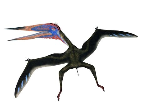 pterodactyl: Zhejiangopterus Flying Pterosaur - Zhejiangopterus was a carnivorous pterosaur dinosaur that lived in China during the Cretaceous Period. Stock Photo