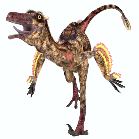 Troodon Reptile - Troodon was a carnivorous small dinosaur that lived in North America during the Cretaceous Period.