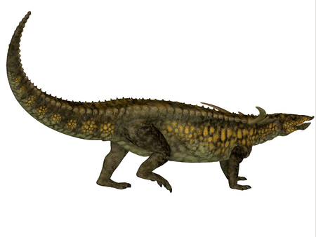 triassic: Desmatosuchus Profile - Desmatosuchus was a herbivore with an armored body that lived in the Triassic Period of Arizona and Texas.