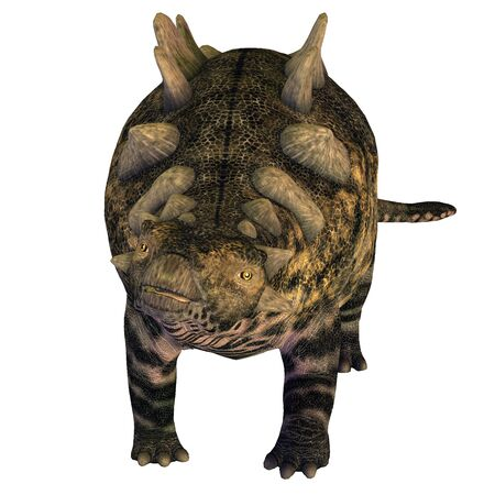 armoured: Crichtonsaurus on White - Crichtonsaurus was a heavily armored Ankylosaur that lived in the Cretaceous Period of China.