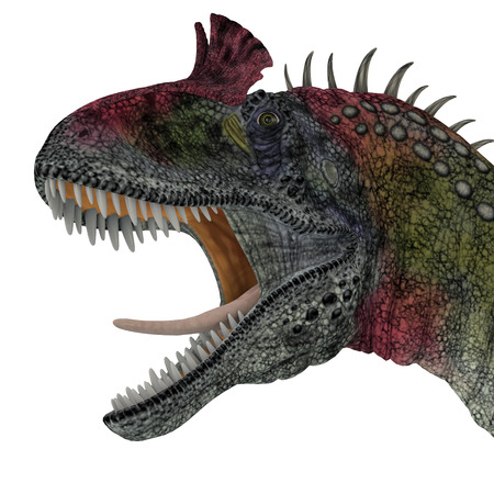 was: Cryolophosaurus Dinosaur Head - Cryolophosaurus was a theropod dinosaur that lived in Antarctica during the Jurassic Period.