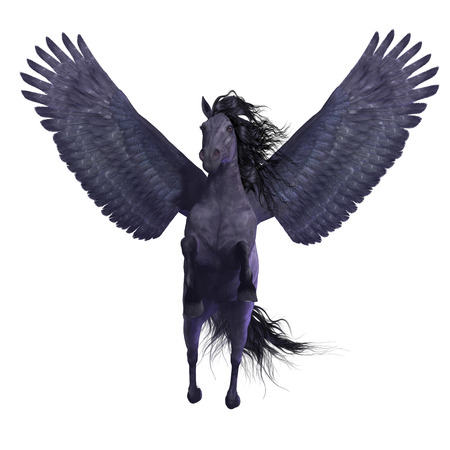 brute: Black Pegasus on White - Pegasus is a divine mythical creature that has the form of a winged stallion horse.